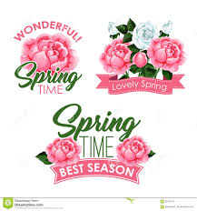 vector springtime roses bunches of greeting quotes stock vector