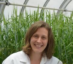GRDC investment in young scientists reaping rewards - GRDC