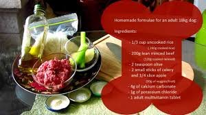 cook for your dog basic food recipe