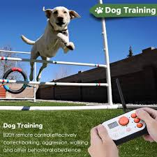Dog Fence Rechargeable Dog Training System 2 In 1 Kit With Training Collar 2 In 1 Dog Training System Dog Fence Walmart Com Walmart Com