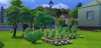 the sims 4 gardening skill plant