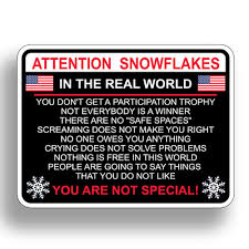 Attention Snowflake Funny Political Trump Car Truck Window Decal Vinyl Sticker 2 75 Picclick