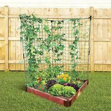 the vertical vegetable garden two 6 h