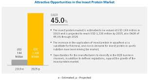 insect protein market by insect type
