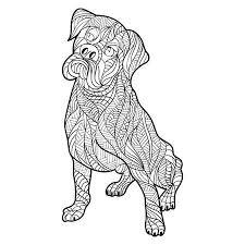 Mewarnai 212 Kleurplaat Zieke Hond