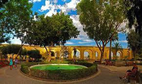 park fountains valletta shrubs