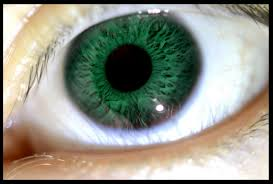 Does Eye Color Affect Vision? | Eye Doctor Latham NY | Clifton Park