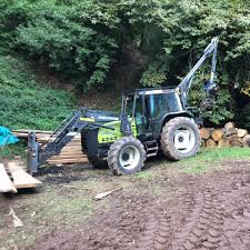 Tree removal services - 17 Photos - Product/Service -