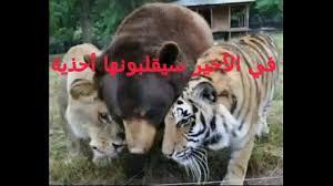 Fokaha Dahk Funny Video Humour 2016عجائب و غرائب صور مضحكة و