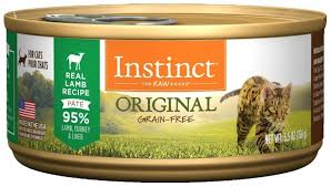 best cat food for diabetic cats 2020