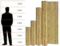 Choosing The Right Bamboo Fence Height Bamboo Fence Wood Fence Installation Wood Fence