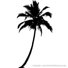 Palm Tree Silhouettes Wall Decals Palm Tree Vinyl Decal