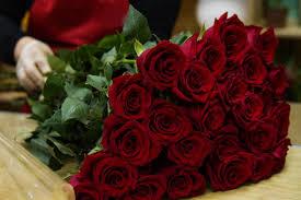 صور ورد احمر اجمل واشيك الورد باللون الاحمر عالم ستات