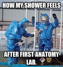 Shower Med School Anatomy Lab memes | quickmeme