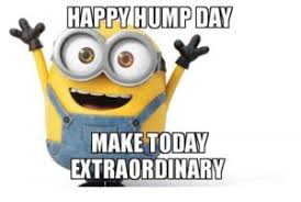happy hump day funny memes broadmemes