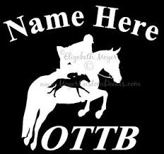 Ottb Off Track Thoroughbred Jumping Horse Decal Sticker 2 Choose Color Name Ebay