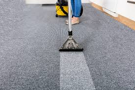 3 Health Benefits of Using a Professional Carpet Cleaner ...