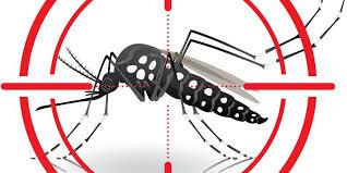 Adam's Pest Control Announces New Mosquito Control Service | Adam's Pest  Control