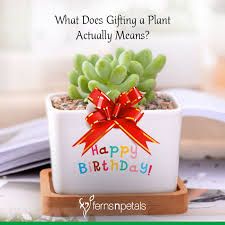 what does gifting a plant actually means