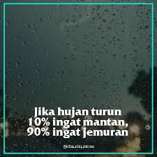 absurd quotes absurdquotesss instagram photos and videos