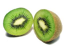 Image result for kiwi image