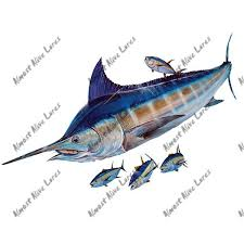 Atlantic Blue Marlin Billfish Tuna Fish Fishing Saltwater Vinyl Window Decal Art Ebay