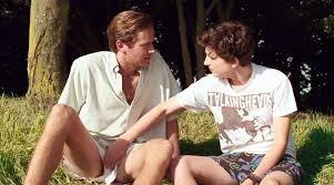 Timothee Chalamet, Armie Hammer to Star in Call Me By Your Name ...