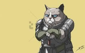 armor grumpy cat meme por