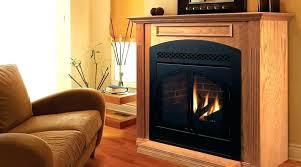 fireplace insert doors leyeshprintse com