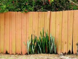 The Top 3 Most Durable Types Of Wood For Building Fences