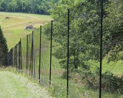 What Is The Ideal Height Of A Deer Fence Deerbusters Canada