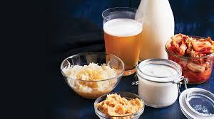 Hasil gambar untuk makanan fermentasi