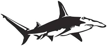 Amazon Com Great Hammerhead Shark Wall Decal Black Facing As Shown Large Saltwater Fish Collection Home Kitchen