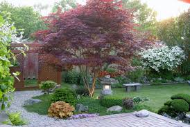 beautiful japanese maple c bells