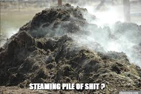 Image result for pile of shit