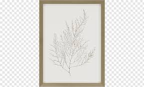 Frames Wall Decal Painting Mirror Graphy Molding Png Pngwave