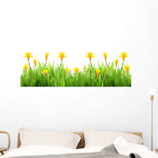 Amazon Com Wallmonkeys Spring Grass With Daffodils Wall Decal Peel And Stick Floral Graphic 48 In H X 48 In W Wm36687 Furniture Decor