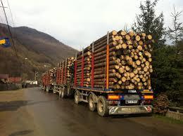 Camioane cu lemne furate, sechestrate de localnici la Măguri ...
