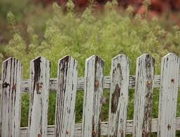 Dog Proofing Fence 10 Ways To Dog Proof Your Backyard