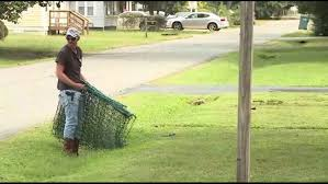 Virginia Man Takes Down Electric Fence After Installing It To Keep Kids Off His Lawn 10tv Com