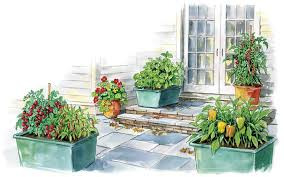 container gardening with vegetables and