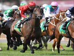 Geelong Cup 2020: List of runners to ...