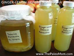 ginger lemon jasmine kombucha the