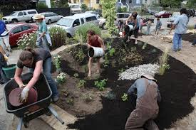 neighbors fight stormwater pollution by