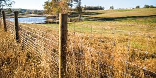Bekaert Fencing As Strong As You Are Bekaert Fencing Steve Weisman Gaucho Pro Cattleman Barbed Wire Don Nevill Vic Anderson Big Sky Country Ranching