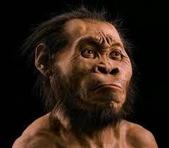Resultado de imagen de La cueva de Manos está a apenas 40 kilómetros de la cueva de Amud y a 54 kilómetros de la de Kebara,