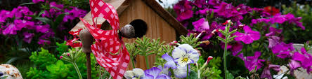 9 perfectly petite fairy garden plants