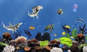 49 fish aquarium live wallpaper on