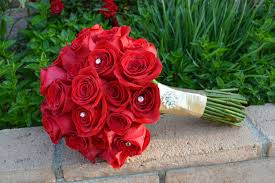 صور ورد صور الورد صور زهور اجمل صور ورود
