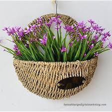 plants garden flower pots planters